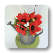 A Garden Themed Cake:  Watering Can with Edible Poppies